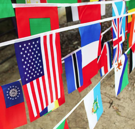 Image of 200 Country Flags, 50 Meters In Length, International Banner, Olympics World Cup Grand Opening sold by Bellview Goods