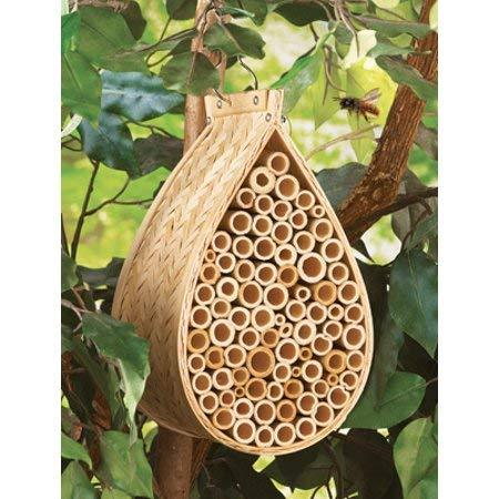 Image of Bamboo Mason Bee Hive in a tree